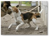 Shiver~