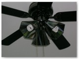 Fan light shades