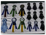Specialty ribbon prizes